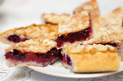 смородина торта ягод Стоковые Фото