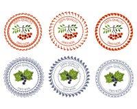 Смородина логотипа и пакет элемента дизайна рябины Стоковые Фото