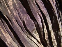 сморщенная ткань Стоковое Фото