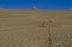 Смотреть вверх большую песчанную дюну стоковая фотография