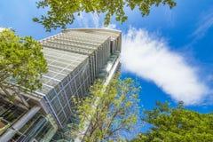 Смотреть вверх на большом деле и вкладе средств массовой информации здания или города стоковое фото