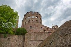 Смотреть вверх на руинах башни замка Гейдельберга Стоковые Фотографии RF
