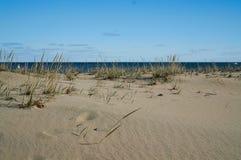 Смотреть вне к океану за травой пляжа Стоковое Фото