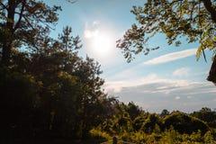 Смотреть вне над островом от маяка на Assateague Стоковые Фотографии RF