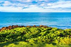 Смотреть вне над Тихий Океан Стоковое Фото