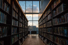 Смотреть вне окно библиотеки Стоковое фото RF