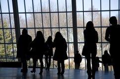 смотреть вне окно людей Стоковые Изображения