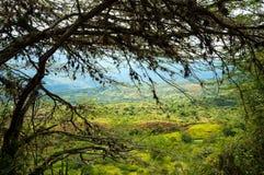 Смотреть вниз на долине Стоковая Фотография RF