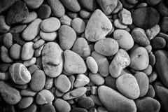 Смотреть вниз на камешках пляжа в monochrome Стоковое Изображение