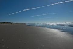 Смотреть вниз с плоского пляжа с стадом птиц Стоковая Фотография RF