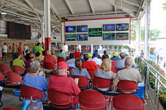 Смотреть гонки на ТВ, Saratoga Springs, NY, Том Wurl Стоковые Фотографии RF