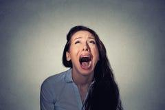Смотреть женщины кричащий вверх Стоковое фото RF