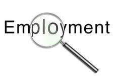смотреть занятости Стоковая Фотография RF