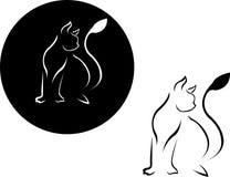 смотреть кота Стоковое Изображение RF