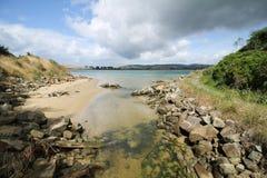 Смотреть к реке Catlins дает славную природу стоковые фотографии rf