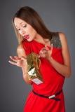 смотреть присутствующую shoping женщину Стоковое Изображение RF