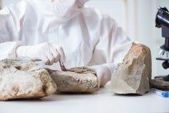 Смотреть ученого и каменные образцы в лаборатории стоковая фотография