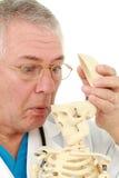 смотреть череп человека Стоковая Фотография RF
