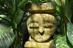 смотрите на камень Стоковые Фотографии RF