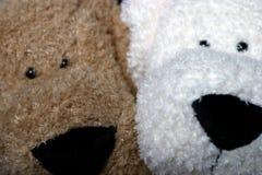 смотрите на щенка Стоковая Фотография RF