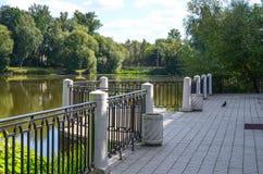 Смотровая площадка на пруде Стоковые Фото