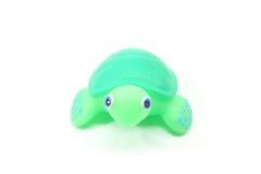 смотрящ черепаху игрушки вы стоковые фото