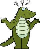 смущенный аллигатор Стоковые Фото