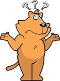 смущенный кот Стоковое Фото