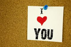 Смысл концепции влюбленности показа i воодушевленности титра текста сочинительства руки спасибо давая признательность оценивает н стоковые изображения rf
