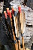 Смычок и стрелки Стоковое Изображение RF