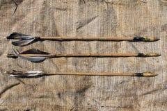 Смычок и стрелки Стоковая Фотография RF