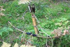 Смычок и стрелки Стоковое Фото
