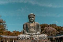 Смычок перед Буддой стоковые изображения