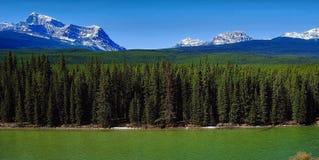 Смычок River Valley Banff Стоковое Изображение RF