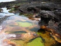 см. воду Стоковое Изображение