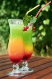 снаружи коктеила цветастое Стоковая Фотография RF