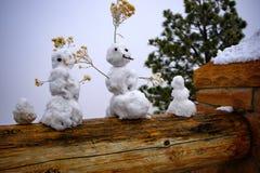 3 снеговика стоковые изображения