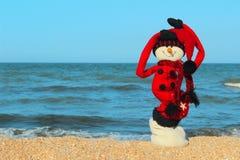 Снеговик в красных одеждах стоя на пляже Стоковые Изображения RF