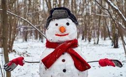 Снеговик в парке Стоковые Изображения RF