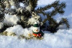 Снеговик в снежке Стоковая Фотография RF