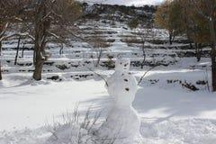 Снеговик ждет весну стоковые фото