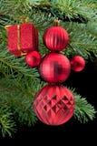 снеговик красного цвета сосенки удерживания подарка ветви коробки Стоковое фото RF