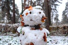 Снеговик от первого снега Стоковое Изображение RF
