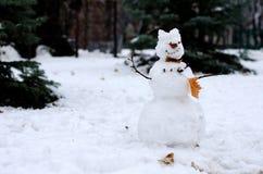 Снеговик с листьями осени на предпосылке елей Горизонтальный взгляд Стоковые Фото