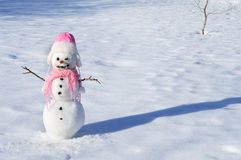Снеговик стоковые изображения rf