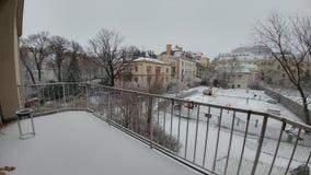 снег 2016 вены первый стоковые изображения rf