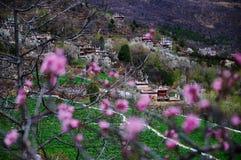 Снег весны тибетской деревни Стоковое Фото