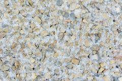 Снег вокруг малых камней стоковые изображения rf