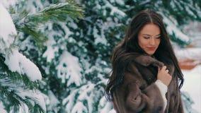 Снег встряхивания женщины брюнет от замедленного движения ветвей сосны зимы сток-видео