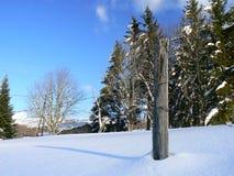 Снег в Альпах (Vercors), Франция Стоковые Изображения